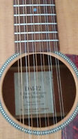 12 String Martin Guitar DM12 with case