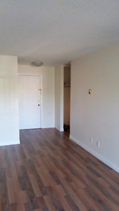 Beautiful 1 bedroom available June 15