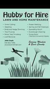 Leaf Cleanup and Removal  Windsor Region Ontario image 1