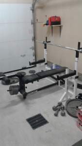 Bench Press (High-Quality / Olympic Bar / With 300 lbs Weights)
