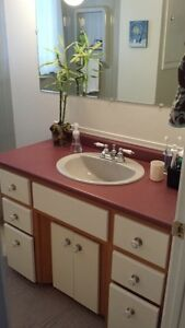 "48"" vanity with sink and taps SOLD"