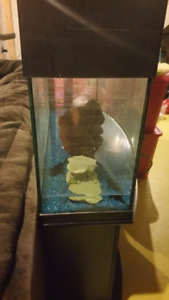 Aquarium, Oceanic Bow front 46 Gal. with Stand