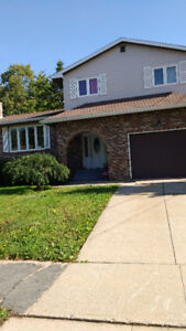 Woodlawn 4 level home for sale