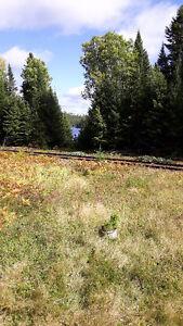 A Vendre Chalet de chasse et pêche Lac-Saint-Jean Saguenay-Lac-Saint-Jean image 3