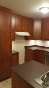 Beautiful 9 Year Old 1000 Sq Ft Condo For Rent