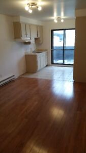 Well Located 3 1/2 with Storage Room & Balcony (NDG):