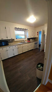 Room available immediately - minutes from MUN St. John's Newfoundland image 4