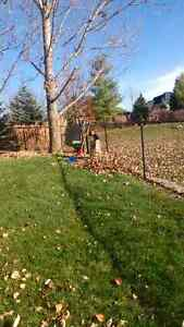 $5 a bag leaf and lawn clean up London Ontario image 3