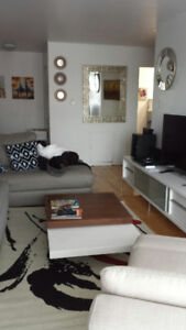 Renovated Apartment For Rent In Ville St-Laurent !