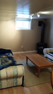 One bedroom basement apartment in Dowling