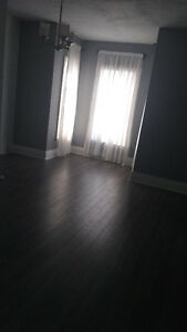 Looking for roommate. Giant room for rent.