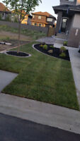 *EHD LANDSCAPING* FINAL GRADE, LANDSCAPING PROJECT, DECK/ FENCE!