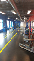New gym looking for trainers