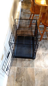 Wire dog cage