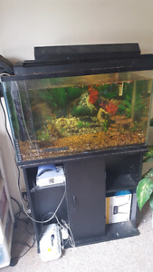 30 gallon fish tank with everything you need for sale.