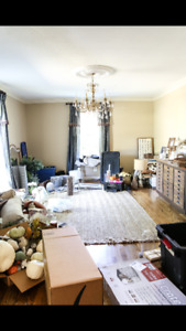 Free this weekend! Help organize your home