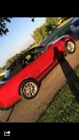 2010 V6 Mustang in Excellent Shape
