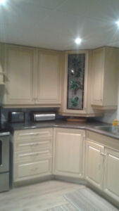 Amazing, Clean, Spacious, Attractive Kitchen Cupboards Apt. Size