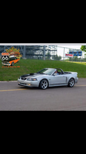 2000 Ford Mustang conver. SUPERCHARGED