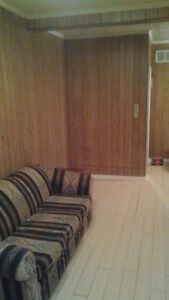 2BR Apartment available immediately - 1100 all inclusive