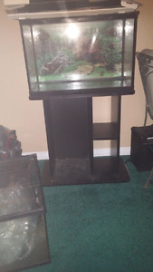 20 gallon with stand