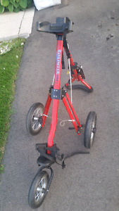 3 wheel Golf cart in excellent condition