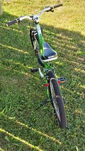 Vélo pour fille West Island Greater Montréal image 3