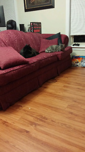 Couch & Chair (cute cats not included) pickup only!