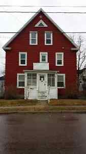 ATTENTION INVESTORS!! TRIPLEX AVAILABLE DOWNTOWN! ~ 227 Dominion