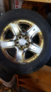 2006 Toyota rav4 winter rim and tire set