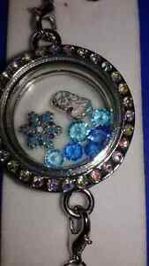 Frozen Charms and Locket  $15 !