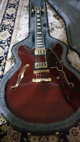 D'angelico EX DC semi hollow body guitar for sale