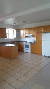 Spacious 3 bedroom apartments in quiet area, 2 available Oct 1st
