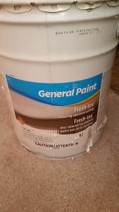 5 gallon Ceiling paint