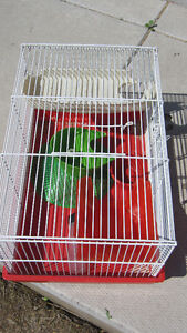 Hamster Small Pet Cage