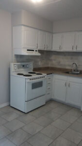 Fully-Renovated 2 Bedroom Apartment for Rent