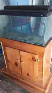25gl Aquarium with hand made pine stand