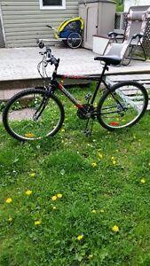 "26"" mountain bike"