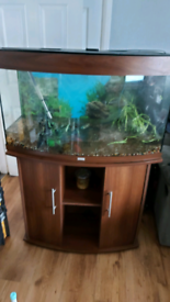 Juwel Vision Aquarium