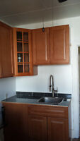 Renovated 4-1/2 unit near metro verdun for now