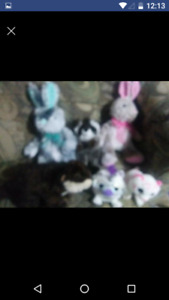 Huge lot of gently used stuffies ty and other brands great shape