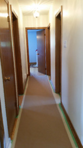 Professional Painting Service (E-Painting Solutions)