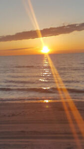 July 13 to 20 available!!!! Private Sauble Beach cottage rental