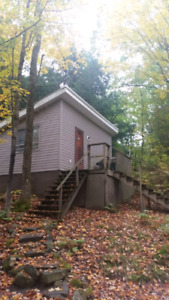 Tiny cottage for sale in muskoka