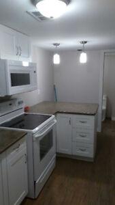 One bedroom legal basement apartment - Kingston East