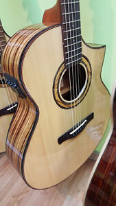 Ibanez Acoustic-Electric guitar with Zebrawood back/sides. NEW!