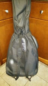 Acoustic Guitar with Case Cambridge Kitchener Area image 3