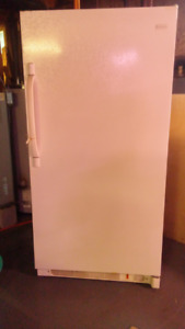 Stand up Freezer for sale.