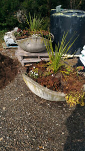 Concrete planter in great shape