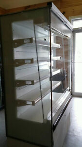 Merchandiser Refrigerator for Sale
